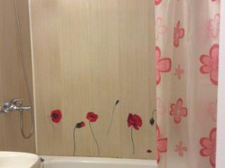Аренда квартир: 1-комнатная квартира, Омск, ул. Масленникова, 41, фото 1